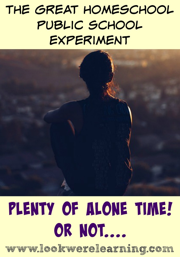 Plenty of Alone Time - Do you really get more alone time when you send your kids to public school?