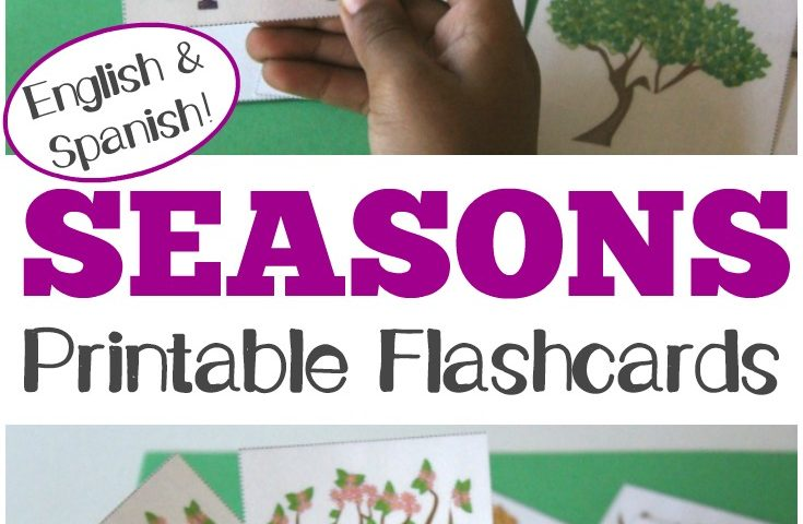 Free Printable Flashcards: English and Spanish Season Flashcards