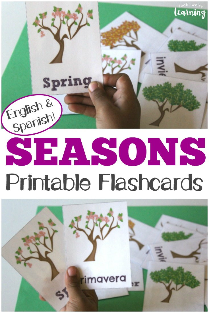 These printable English and Spanish season flashcards are great for learning about the seasons in both languages!