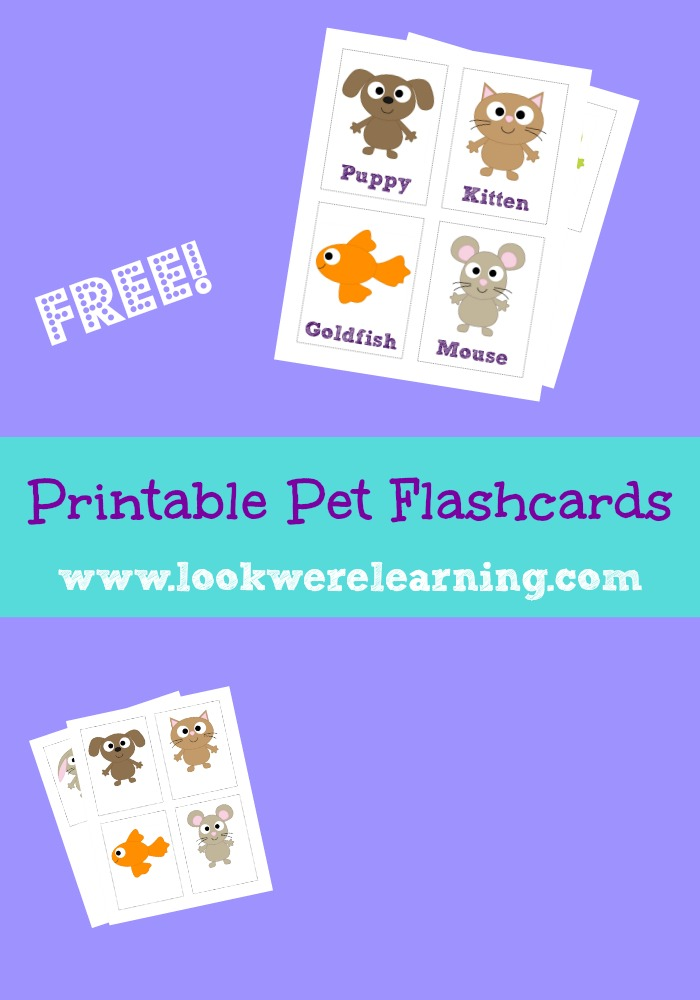 Free Printable Pet Flashcards