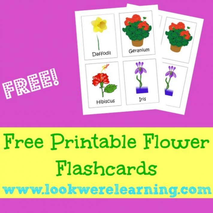 Printable Spring Flower Flashcards - Look! We're Learning!