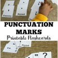 Use these free punctuation flashcards to help kids learn to recognize common punctuation marks!