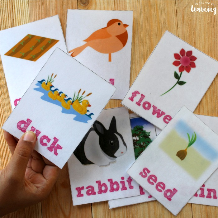 Printable Spring Sight Word Flashcards for Kids