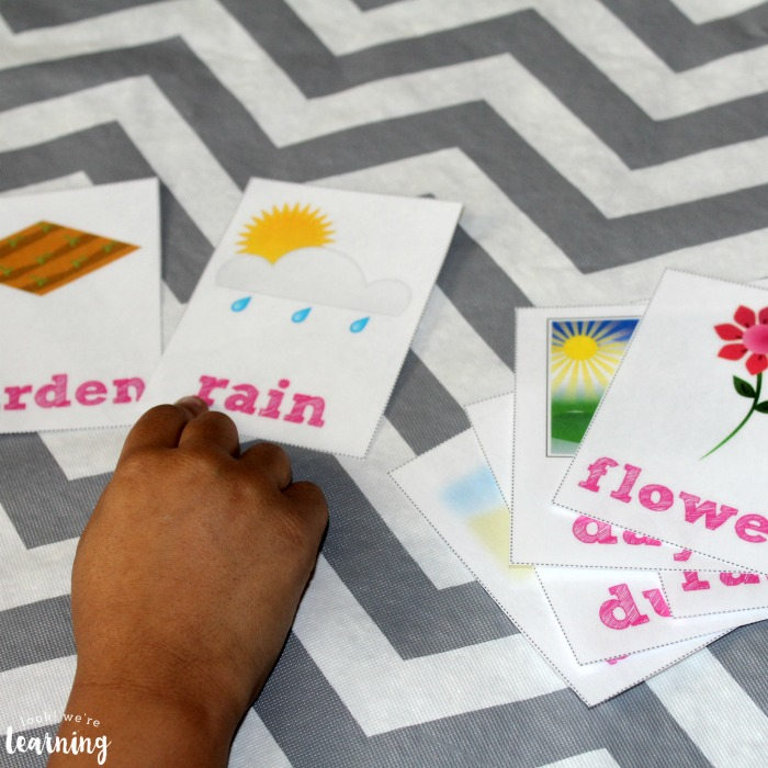 Printable Spring Sight Word Flashcards