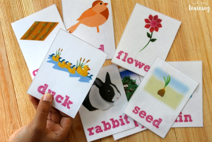 Spring Sight Word Flashcards