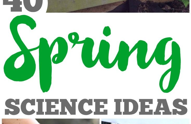 40 Fun Spring Science Ideas for Kids