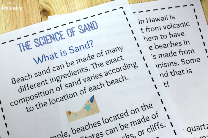 Printable Beach Unit Study