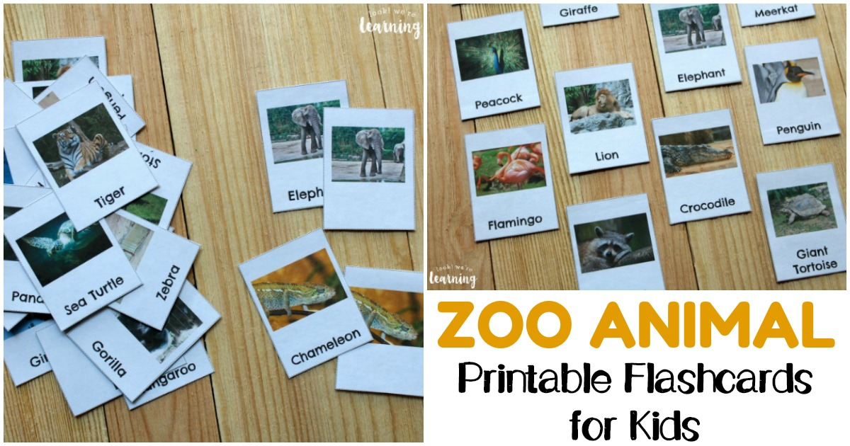 Printable Zoo Animal Flashcards for Early Learners