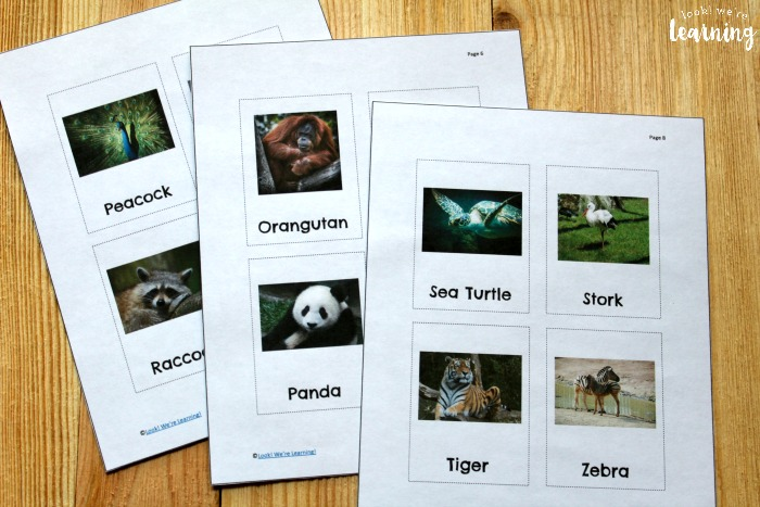 Printable Zoo Animal Flashcards for Kids