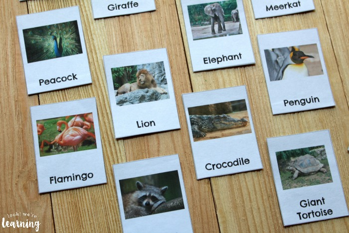 Printable Zoo Animal Flashcards for Preschoolers