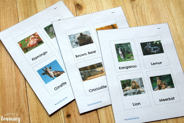 Printable Zoo Animal Flashcards