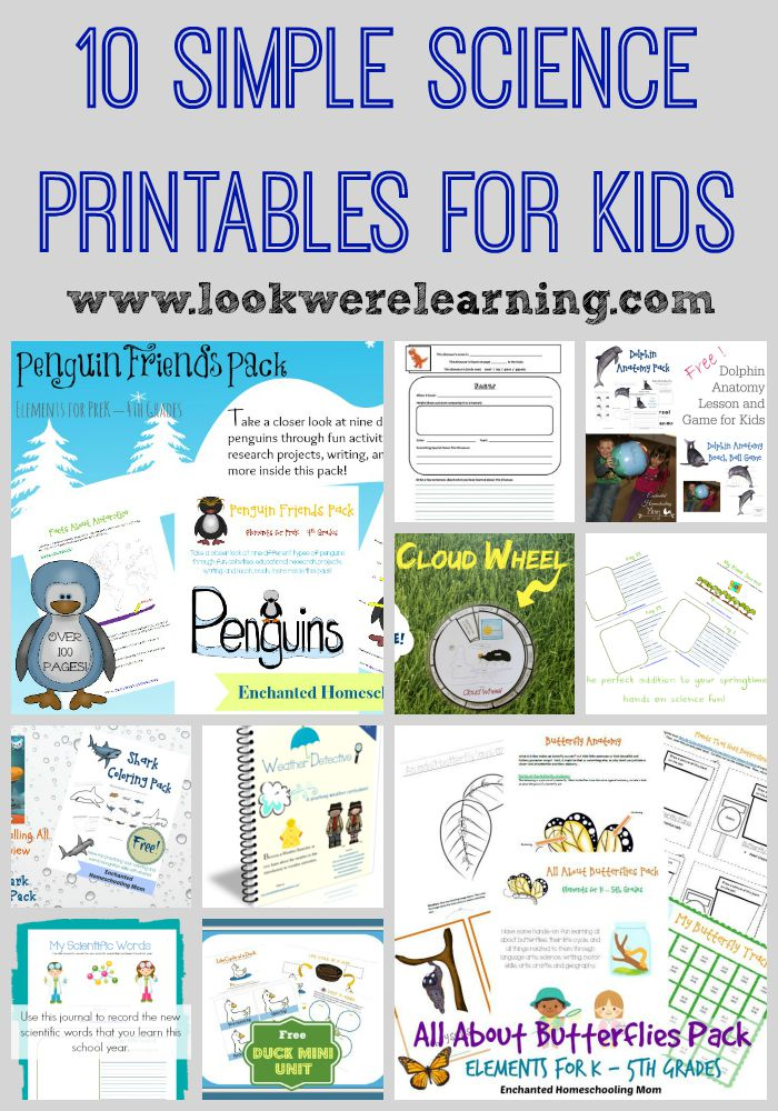 10 Simple Science Printables for Kids