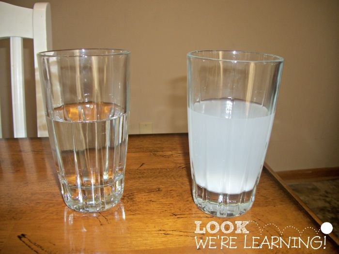 Simple Science Experiments: Make an Egg Float!