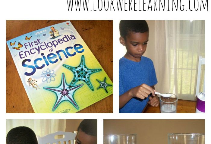 Simple Science Experiments: Floating Egg Experiment