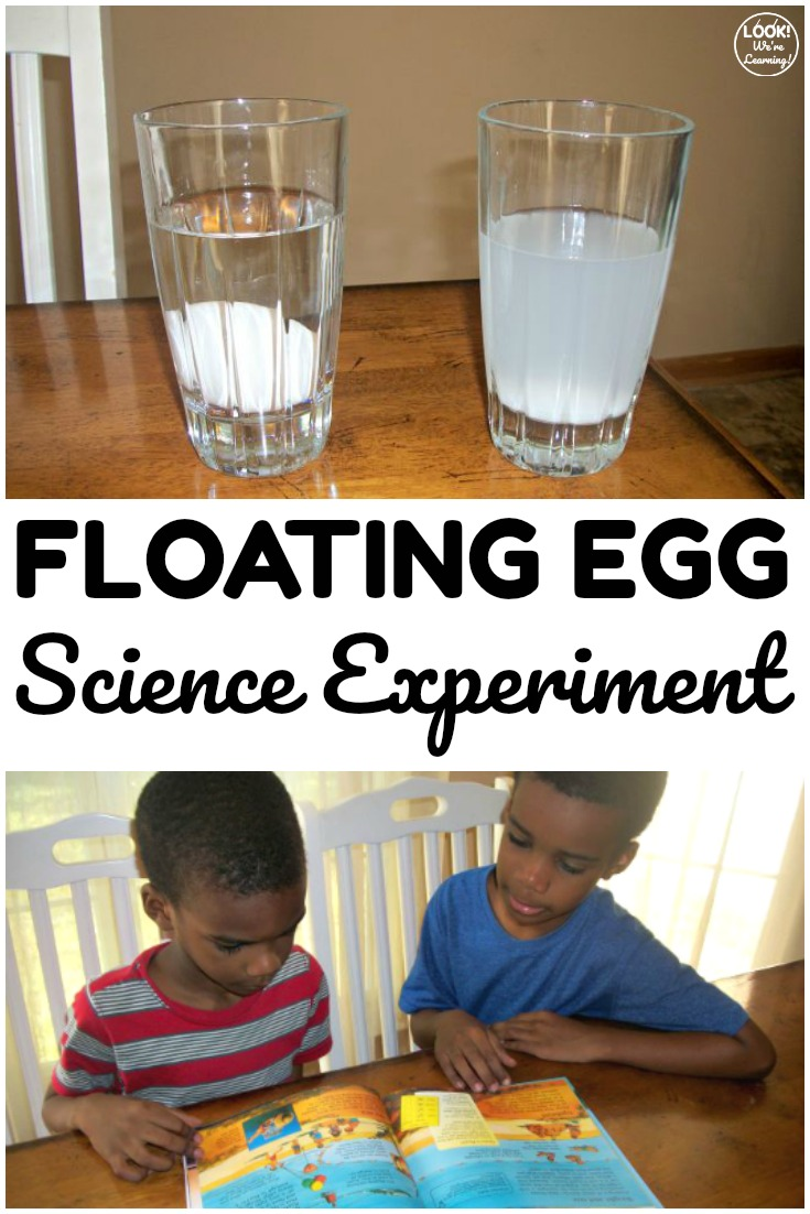 This easy floating egg science experiment is so fun for kids who are learning about salinity! Great for science at home too!