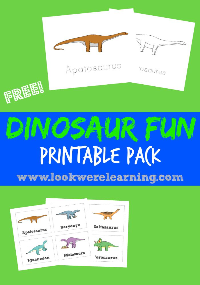 Free Dinosaur Printable Pack - Look! We're Learning!