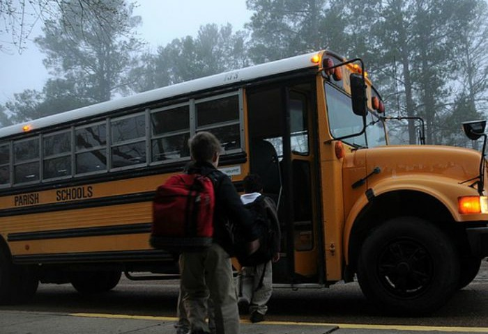 Surviving the Back to School Crash