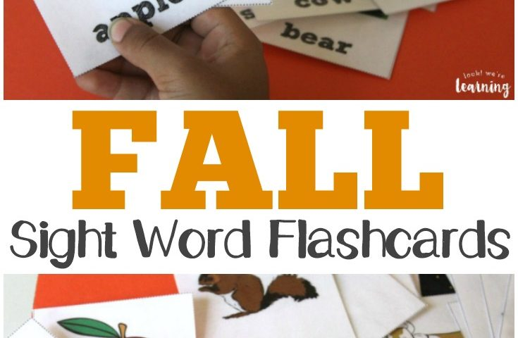 Fall Sight Words Flashcards