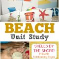 Use this fun beach unit study for kids to learn about this amazing sandy ecosystem!