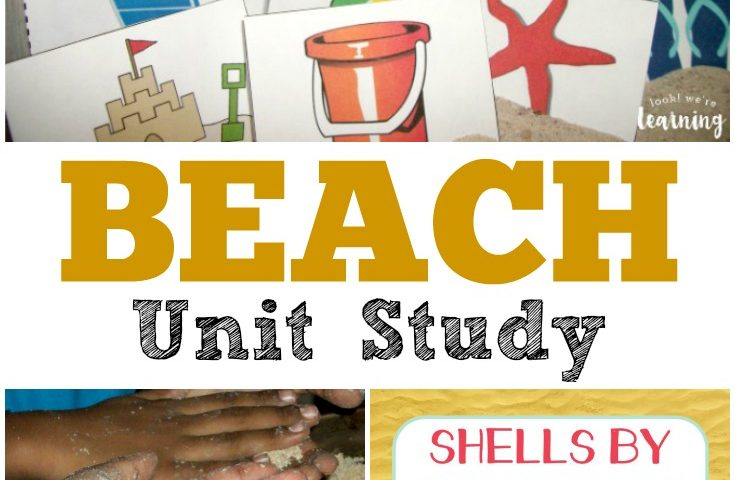 Homeschool Unit Studies: Beach Unit Study