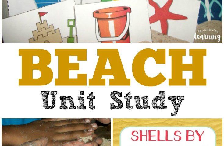 Homeschool Unit Studies: Beach Unit Study