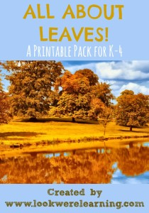 All About Leaves Printable Pack - Look! We're Learning!