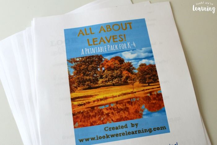 All About Leaves Printable Unit Study