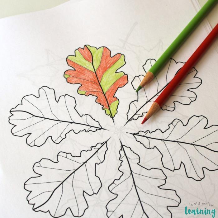 Fall Leaves Printable Unit Study