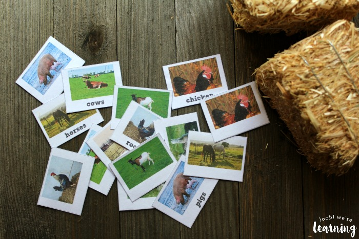Farm Animal Identification Flashcards for Kids
