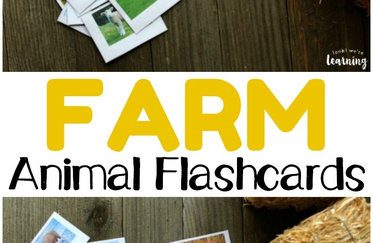 Free Printable Flashcards: Farm Animal Flashcards