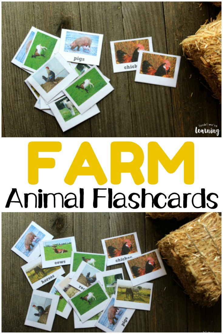 Get to know the animals on the farm with these printable farm animal flashcards!