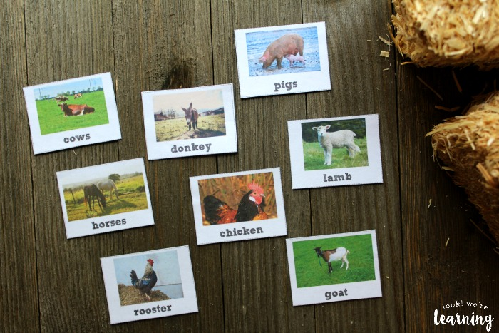 Printable Farm Animal Identification Flashcards for Kids