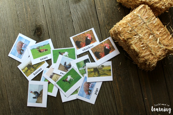 Printable Farm Animal Identification Flashcards
