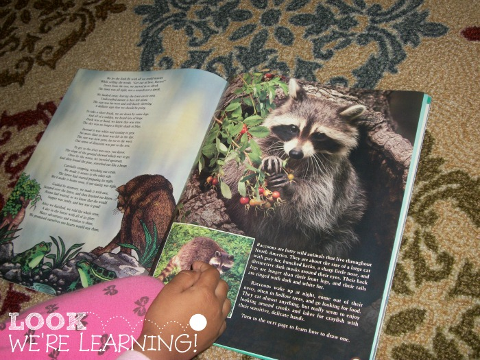 How to Make a Unit Study with Kids' Magazines - Look! We're Learning!