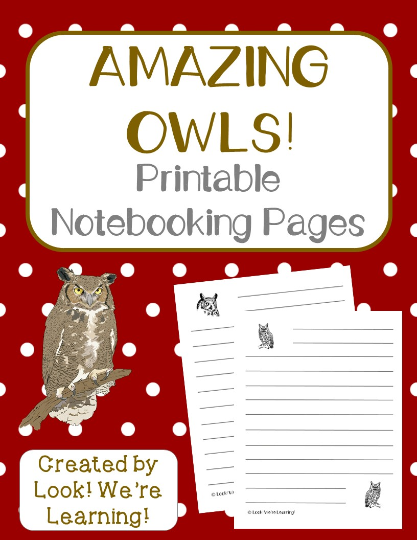 Owl Notebooking Pages for Kids