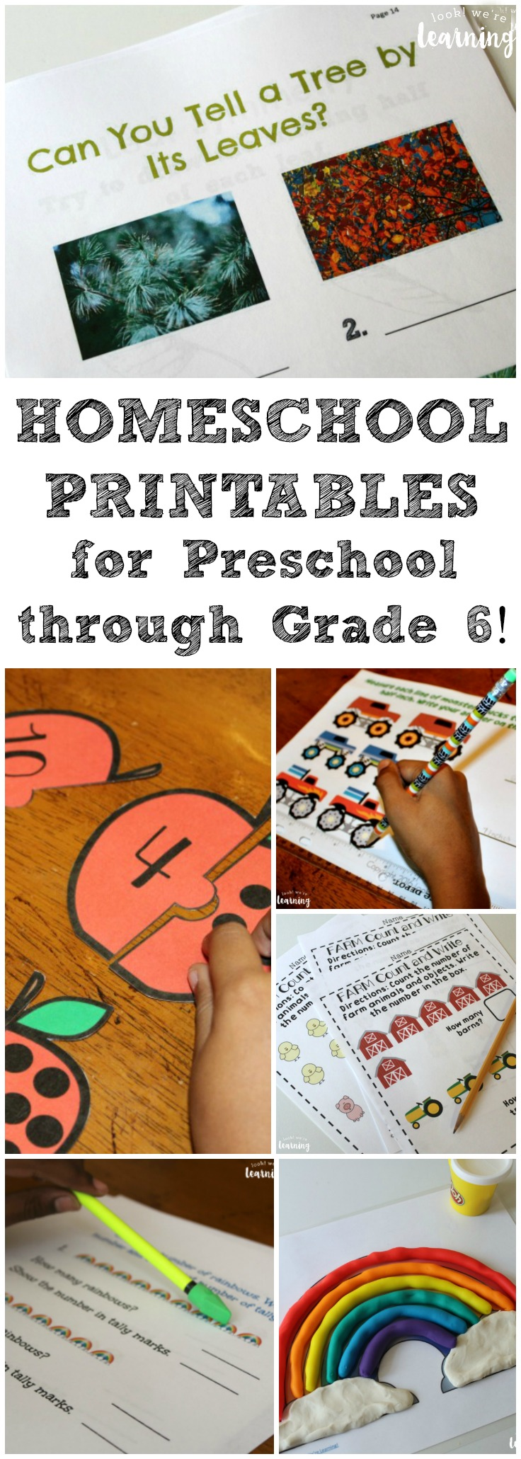 Take a look at all of our homeschool printables for preschoolers all the way to middle schoolers!