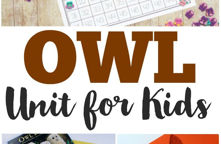 Homeschool Unit Studies: Owl Unit Study
