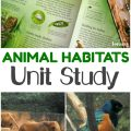 Learn about the different animal habitats on Earth with this animal homes unit study!