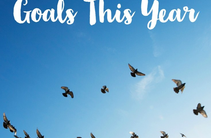 How to Set Reachable Goals …Finally!