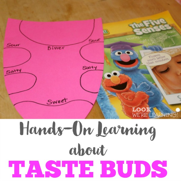 Learning about Taste Buds