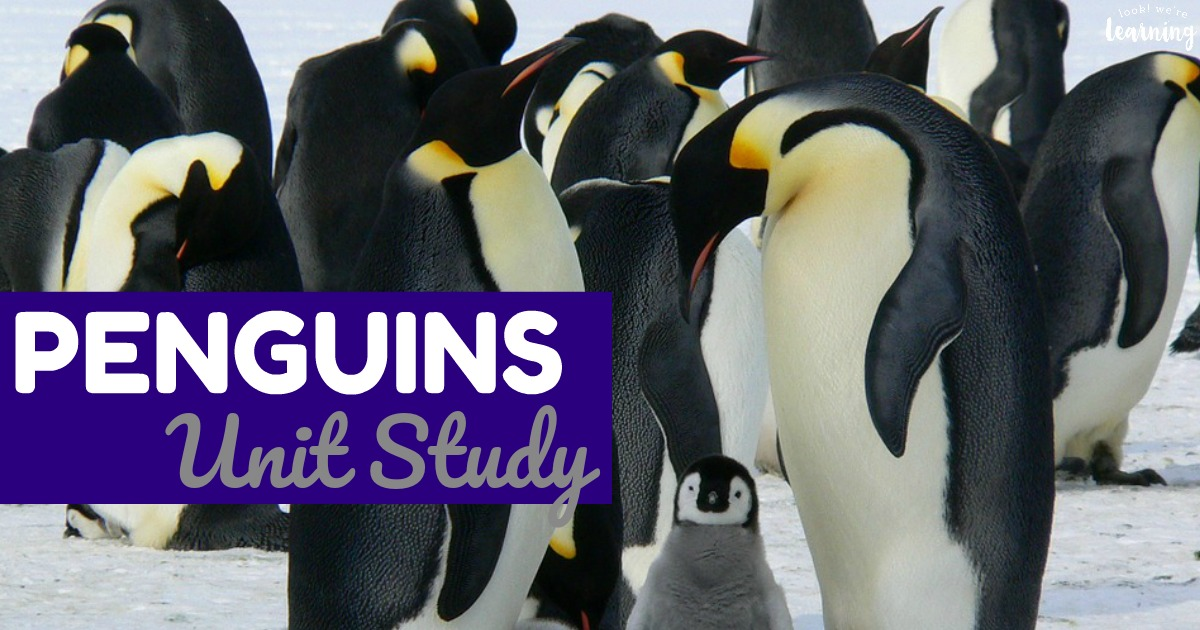 Penguins Unit Study for Kids
