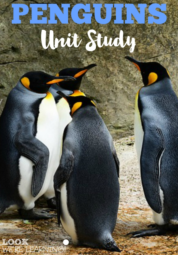 Penguins Unit Study