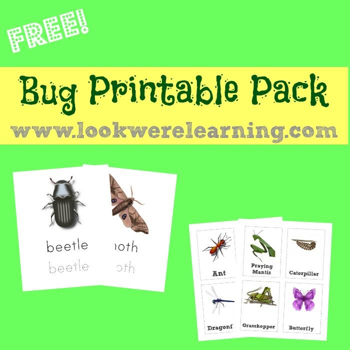 Free Bug Printable Pack