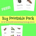 Free Bug Printables Pack