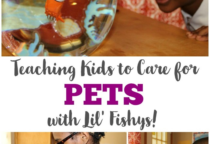 How to Teach Kids to Care for Pets with Fish Toys!