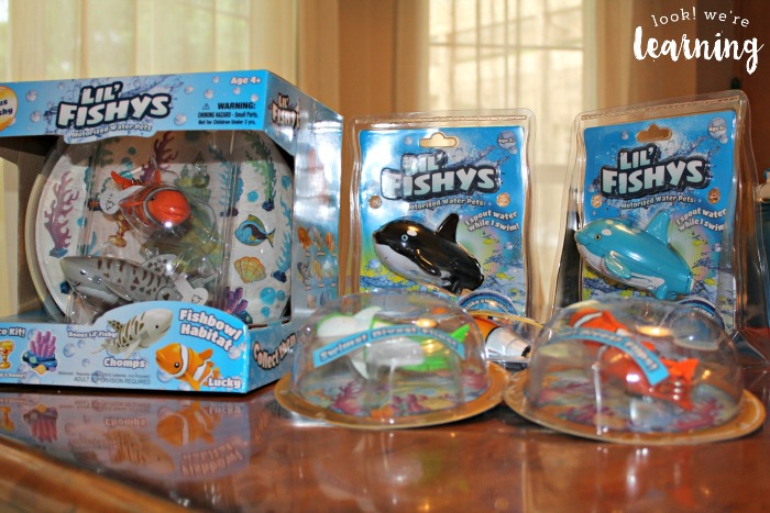 Lil Fishys Fish Toys Review