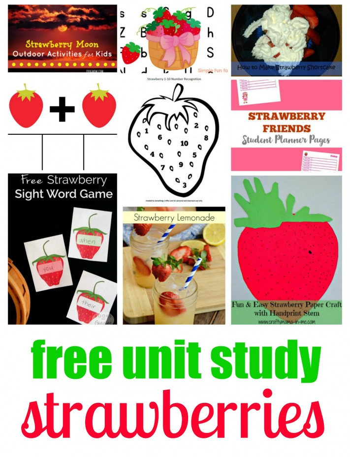 Strawberry Unit Study