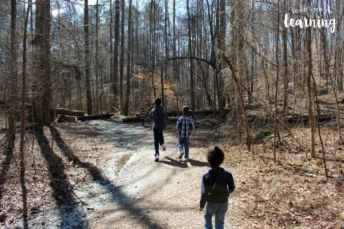 Walking Along a Nature Trail with Kids