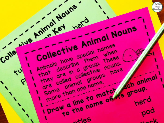 Animal Collective Nouns Sorting Activity