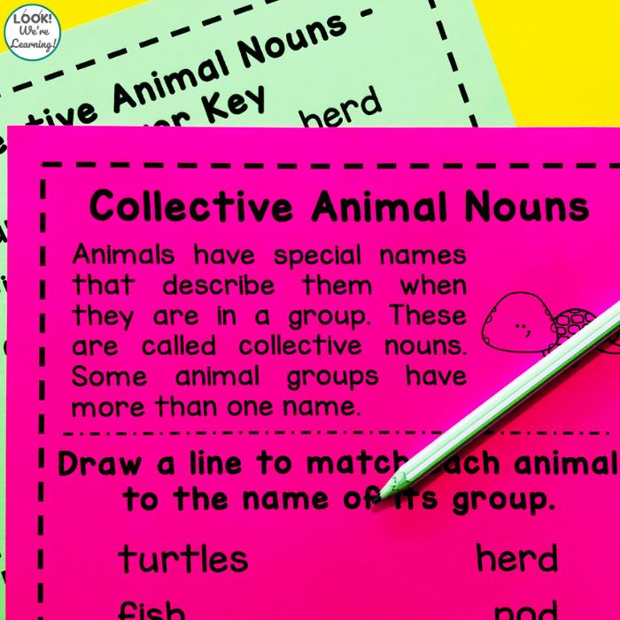 Collective Animal Nouns Activity